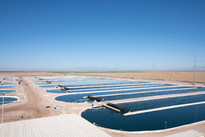 DICライフテックのスピルリナ培養人工池